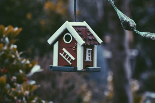 Domek dla ptaków zawieszony na drzewie