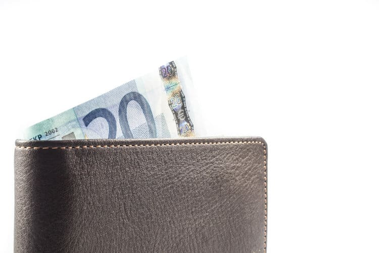 Portfel z 20 euro